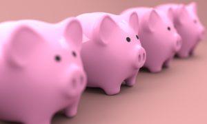חזירי כסף ורודים בשורה